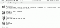2011-09-21-anonymize-ip-ga.png